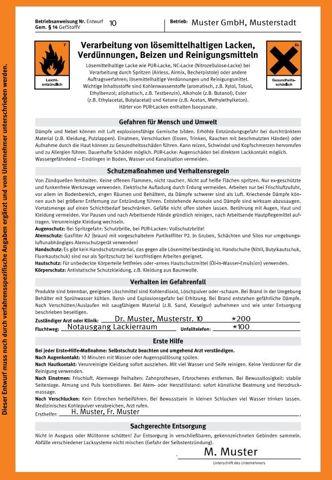 umwelt-online-Demo: Archivdatei - BGI 740 / DGUV Information 209-046 ...